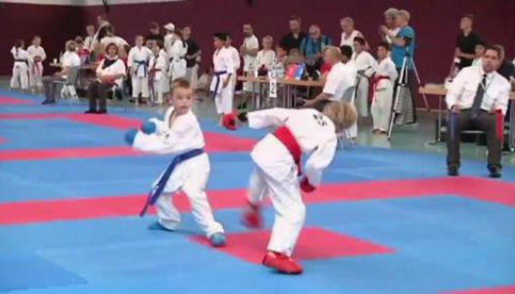 Niedersächsische Landesmeisterschaft Karate