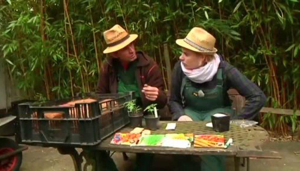Der gartentalk - Der Garten aus der Hölle