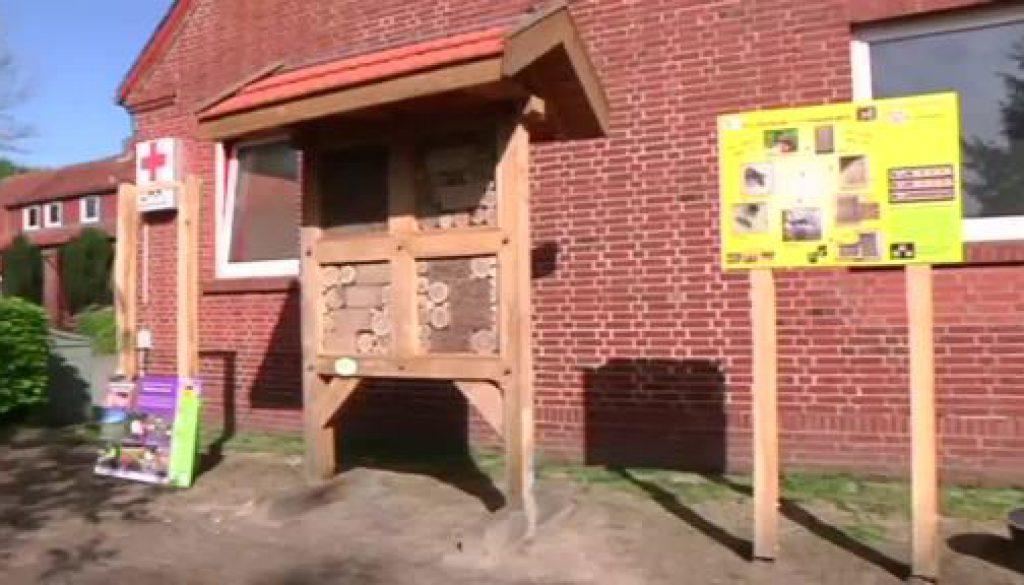 Twister Schulen erhalten Insektenhotel