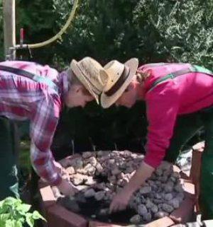 Der Gartentalk - Kunterbunt mit Beet, Blumen, Biotop und Rasen