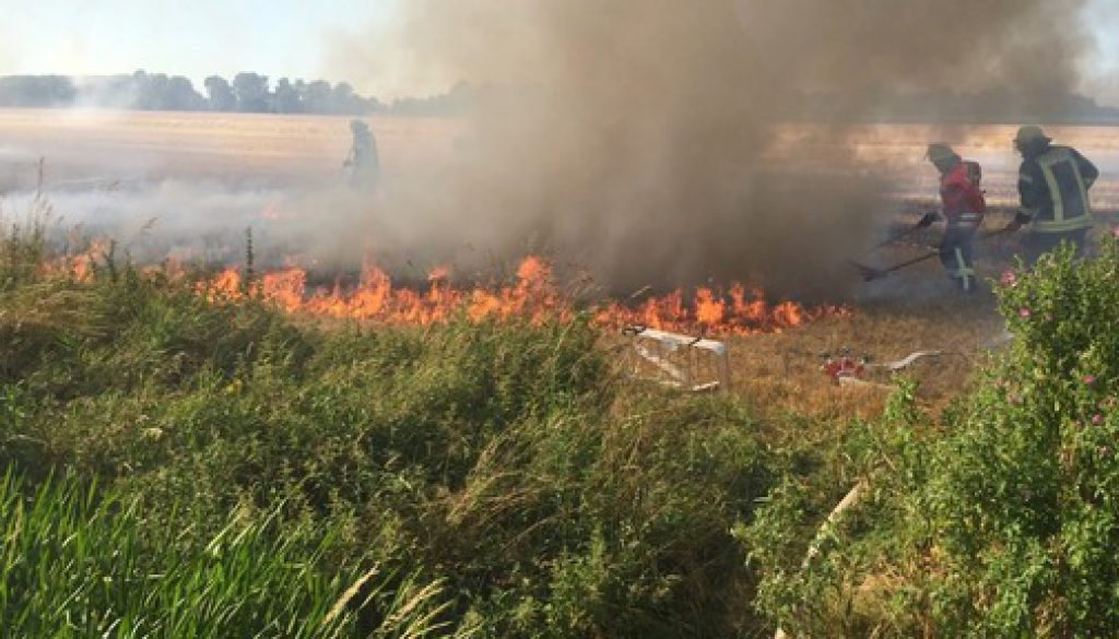 Stoppelfeld in Flammen