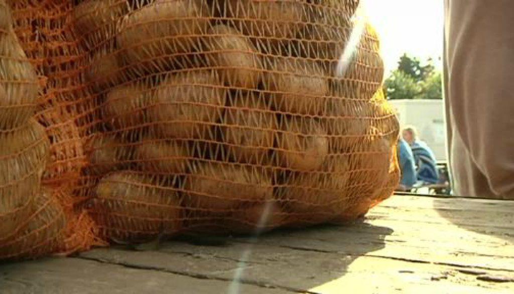 Kartoffelliebhaber zieht es wieder nach Lathen