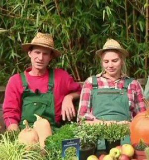 Der Gartentalk - Querbeet