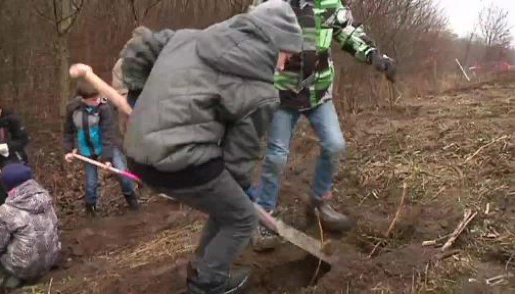Grundschüler greifen für den Naturschutz zur Schaufel