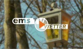 Screen_wetter190221