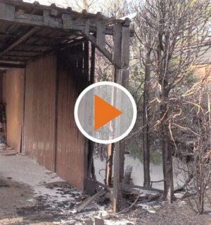 Screen_Heckenbrand springt auf Carport ueber