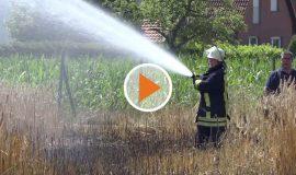 Screen_Nachbarn helfen Feuerwehr bei Feldbrand