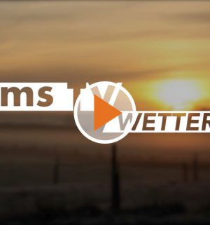 Screen_Wetter-fuer-9.-Juli-2019-1024x576