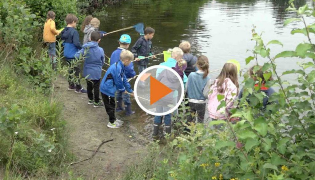 screen_Kinder besuchen Umweltstation