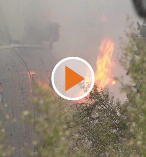 Screen_Feuer zerstoert Auto