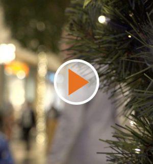 Screen_Emsland bereitet sich auf Weihnachtszeit vor