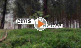 Screen_20-01-29-Wetter