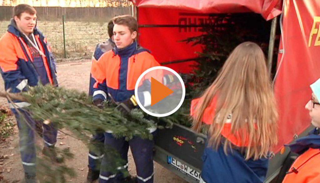 Screen_raus mit den Weihnachtsbaeumen