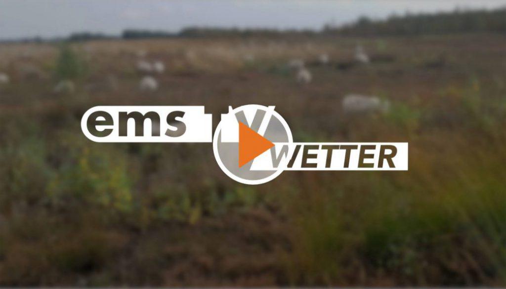 20 03 06 Wetter Screen_