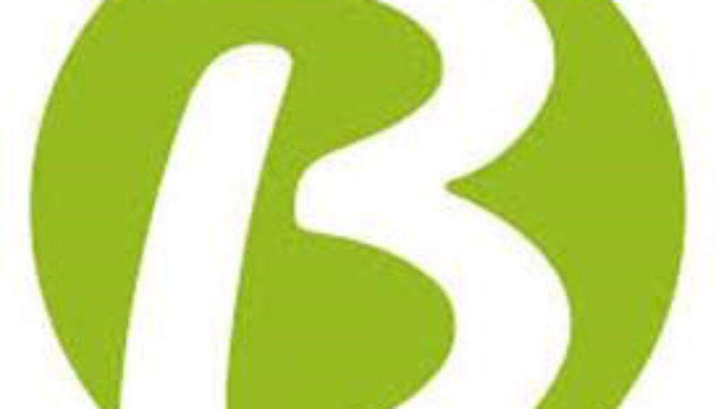 Logo Berning