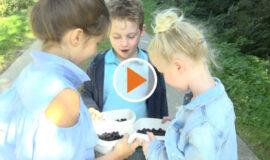 Screen_20 09 21 Marmeladenspende für hilfsbedürftige Kinder