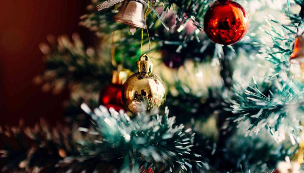 Screen_Weihnachtsbäume für die Gemeinde Geeste
