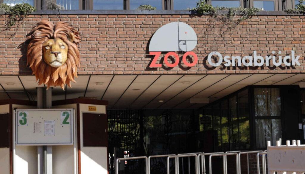 Screen_21 02 22 Tierpflegerin nach Loewenangriff verletzt