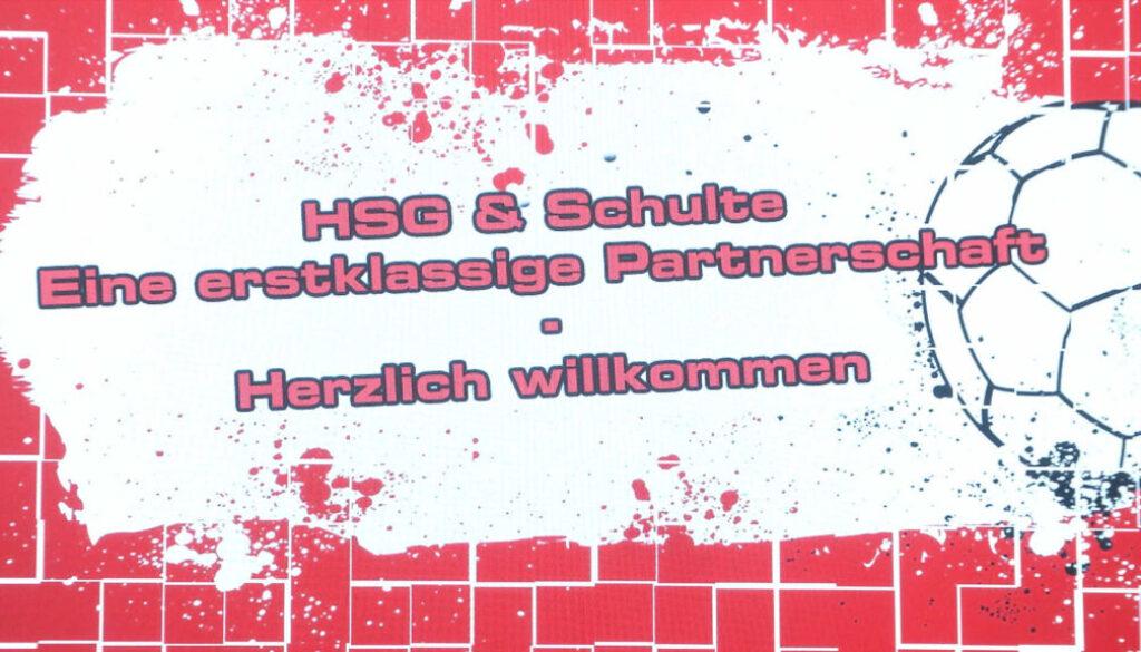 Screen_HSG screen