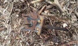 Screen_21 03 08 Unbekannte stellen Fallen im Wald auf