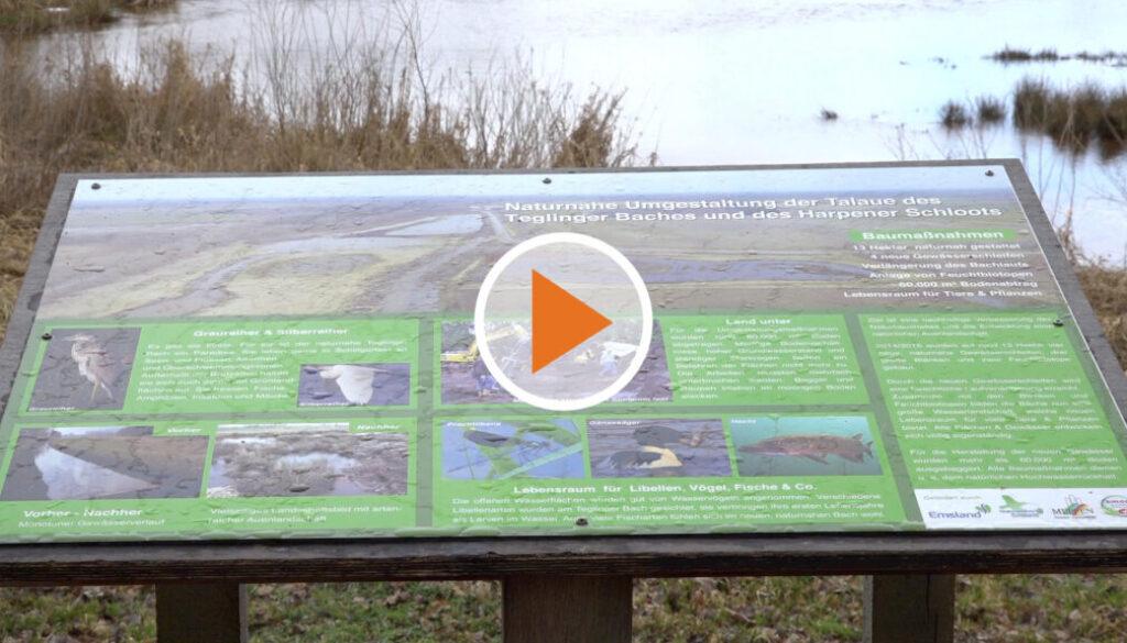 Screen_Spende an die Naturschutzstiftung