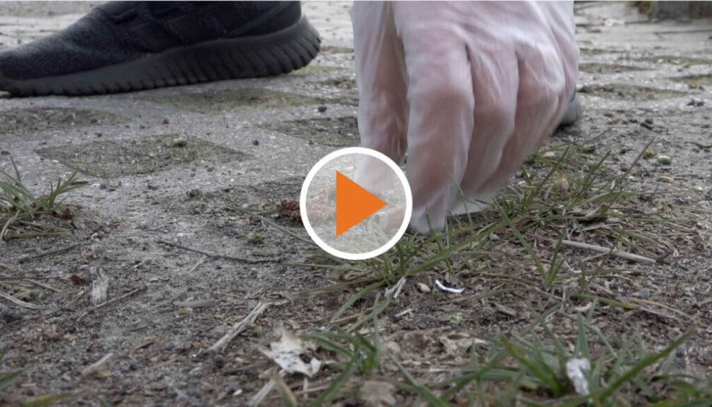 Screen_21 04 12 Müll sammeln für die Umwelt